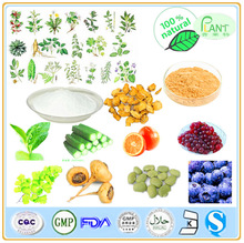 GMP Manufacturer High Quality &100% natural capsicum annuum extract