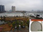 China green tea Manufacturer tea 9369 in sacks