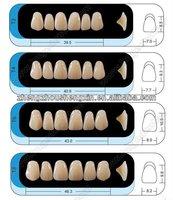 Hot Sale dental acrylic denture teeth-Huge kaili teeth/dental false teeth