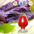 reine natürliche süße lila kartoffeln pulver für lebensmittel rote färbung essen pigment