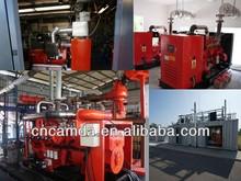 80kW Natural Gas Generator / Biomass Generator / Biomass Power Plant