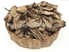 Lowest Price black cohosh root extract / Black Cohosh root P.E. for reduce blood press purpose
