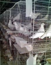 fabricación profesional de galvanizado de cría de jaulas de la paloma