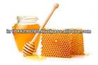 Honey Price in India