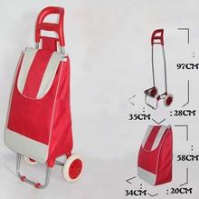 Cheap Vegetable Trolley Folded Shopping Bag (BCT001)