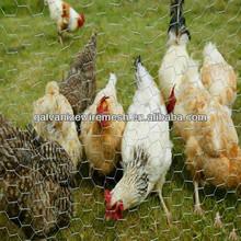 chicken coop iron wire fence