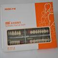 2014 caliente de la venta enorme KAILI dientes / dental prótesis de acrílico dientes / dientes falsos dentaduras