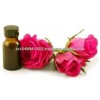 Rose Oil / Rose Essential Oil