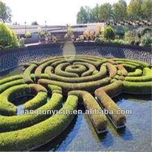 artificial turf for home garden