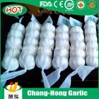 Fresh Garlic specification