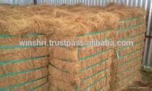 Coconut/Coco golden brown fibre suppliers in Tamil Nadu