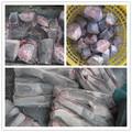 Frozen bagre / bagre agricultura ecológica / bagre de carne