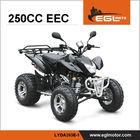EEC Certified New 250cc Quad