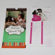 2014 design spiral binding wall calendar,spiral binding wall calendar