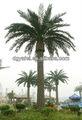 2014 venda quente todos os tipos de palmeiras de Shenzhen artificial canário data palmeira ao ar livre artificial palmeiras