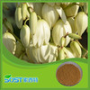 top quality bulk wholesale yucca extract powder