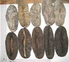 SPECIAL PRICE DRIED SEA CUCUMBERS