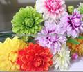 ผ้าดอกไม้ขายส่ง