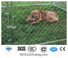 hot dipped galvanised chain link dog run
