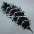 pluma de avestruz impreso penacho de plumas de avestruz penachos de plumas