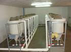Professional high rate customised fish incubator