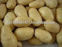 Fresh Potatoes Origin China