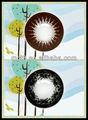 Grandes olhos círculo lentes de contato / avelã colorido contactos lentes