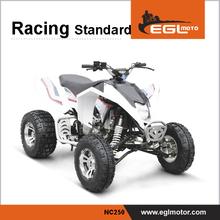 Big Power Quad Racing 250cc Atv