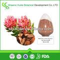 de alta calidad salidroside extracto de rhodiola rosea con precio bajo