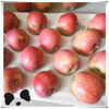China low price fresh delicious red star apple fruit as a wholesalor