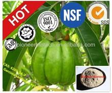 Garcinia Cambogia, pharmaceutical ingredients,CAS#: 6205-14-7 HCA 50% and 60%