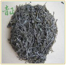 kelp seaweed extract