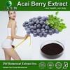 High Quality Acai Berry Extract Powder ,Acai Extract 4:1 ,Acai Powder
