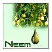 Whole Sale Neem Oil