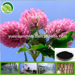 women health supplement Red Clover Extract /Trifolium pretense extract powder/Red Clove PE /isoflavone 2.5%, 8%, 20%,40%