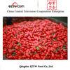 china organic goji berry dried fruit