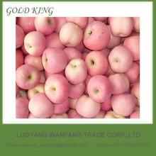 2014 China New Yantai Popular Dubai Fresh Fuji Apples