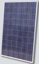 CSA,UL,IEC 250w Polycrystalline Solar Panel