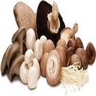 Mushrooms & Truffles - Champignon