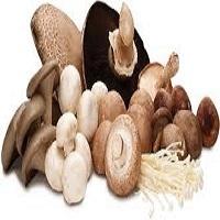 Mushrooms & Truffles - Champignon,Truffles and mushrooms