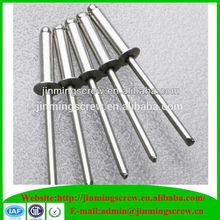 Stainless steel 316 anodized blind rivet