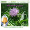 Düşük fiyat süt devedikeni s. E. üretici doğrudan/ücretsiz örnek/organik ürünler