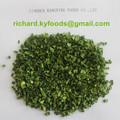cebolinha desidratada xinghua cebolinha base de plantação