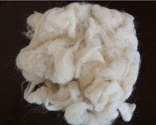 scoured sheep wool