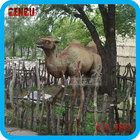 Theme park decoration high simulation life size statue camel