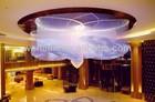 hotel fiber optic light made in china
