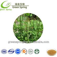 Natural black cohosh p.e.triterpene glycosides extract powder 2.5%, 5%,8%,raw materials