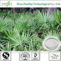 De alta calidad de extracto de saw palmetto en polvo, 100% natual de ácidos grasos, saw palmetto extracto de ácidos grasos gc 25% 45%