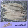 Frais de fruits de mer congelés maquereau poisson viande