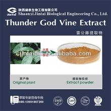 natural popular 10:1 20:1 LEI GONG TENG extract